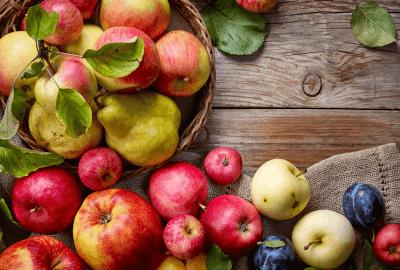 Apfel und Birnensortiment am Biohof Raimund in Kirchschlag
